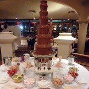 executive-chocolate-fountain-with-food-1cs.jpg